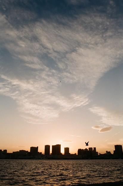 晴海の日暮れ