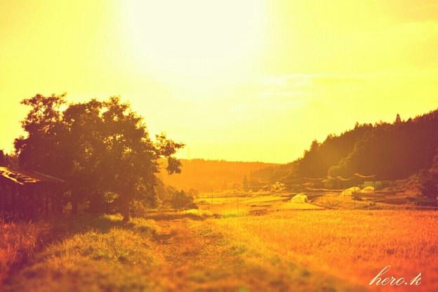 秋実る故郷
