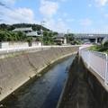 Photos: 目久尻川