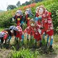 写真: 稲渕棚田のカガシ