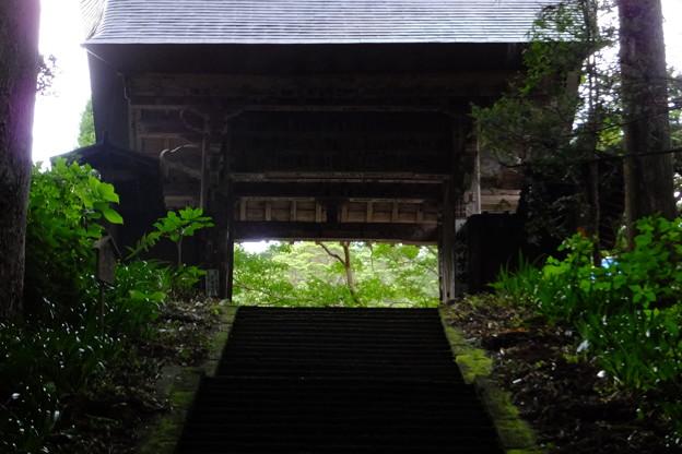 門の向こうは美しい緑が広がっている