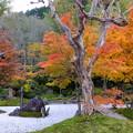 定勝禅寺庭園