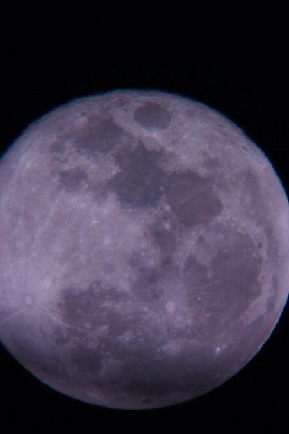 今度は天体望遠鏡で月齢14を観測しました