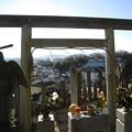 Photos: 吉祥院から高尾山を望む