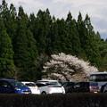 Photos: 写真00285  小岩井農場まきば園駐車場