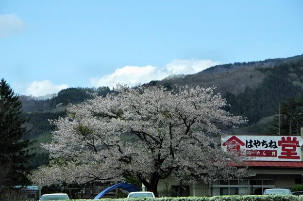 写真00595 福泉寺の駐車場