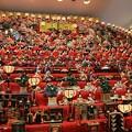 写真: 須坂のひな祭り