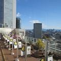 写真: 梅田大丸最上階