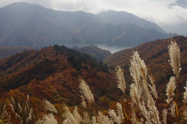 秋元湖 C