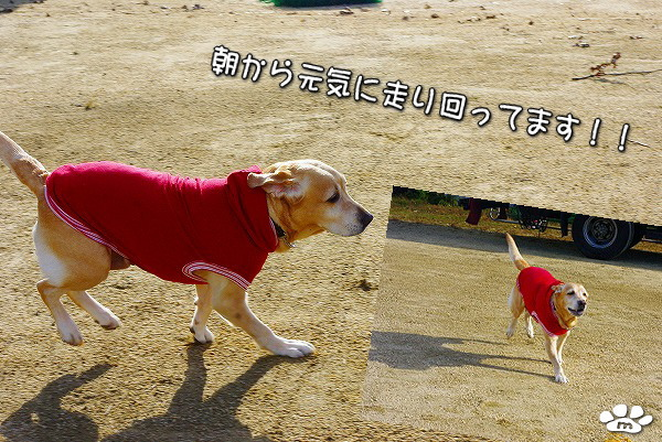 s-myu2009_1219(003)