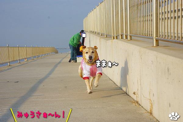 s-myu2009_1230_24