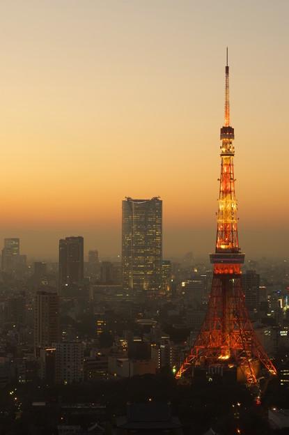 写真: 東京夕暮れ夜景