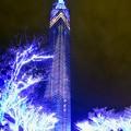 写真: Blue Christmas