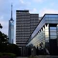 Fukuoka City Museum