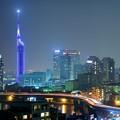 Fukuoka City Light