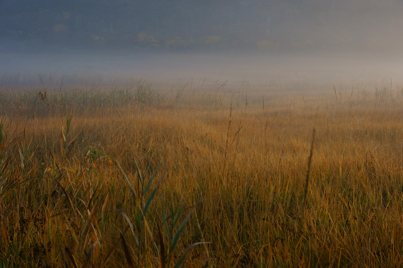 霧の向こう側