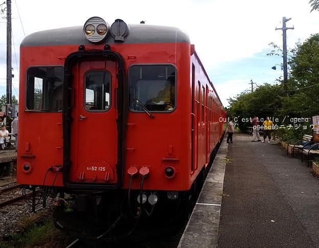 いすみ鉄道 イタリアンランチクルーズ2014 ・01