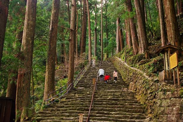 Photos: 那智の滝参道