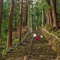 写真: 那智の滝参道