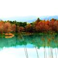 写真: 雲山水