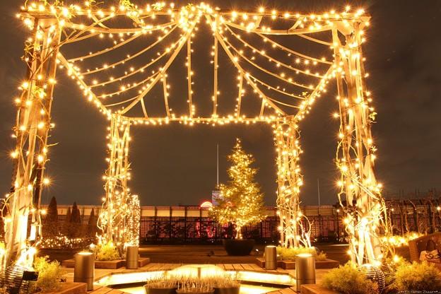 新宿マルイ本館屋上庭園 05
