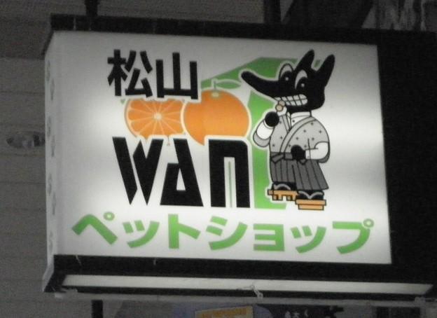 Photos: 坊っちゃんオオカミ