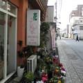 Photos: 商店街の花屋さん