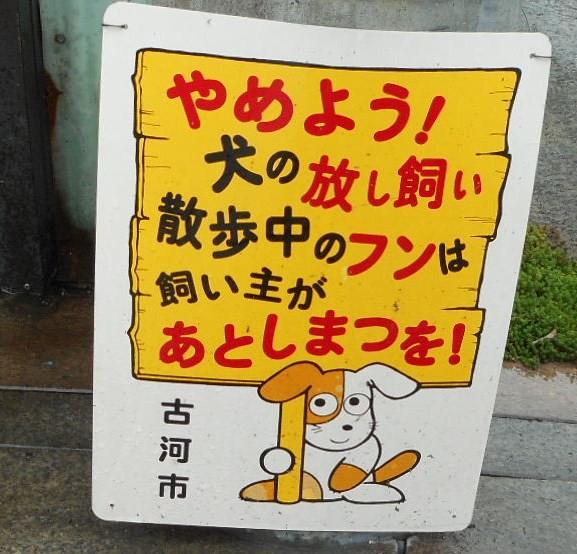 犬糞 ~古河市4