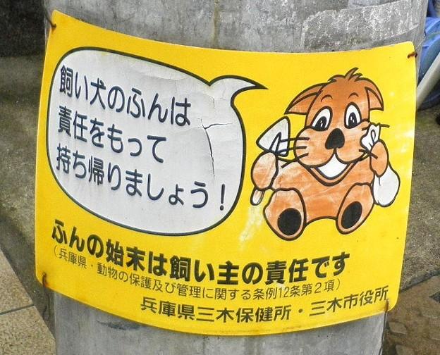 犬糞 ~三木市