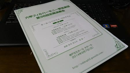 P9088093