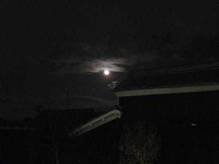 1203-moon