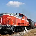 Photos: 八高線 ハンドル訓練列車