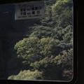 元南海21000系からの眺め