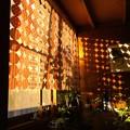紙のカーテン