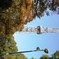 写真: 20111104名古屋テレビ塔 (3)