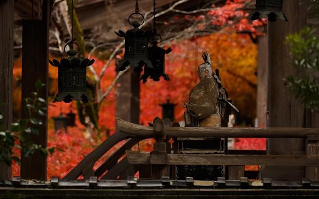 鍬山神社224