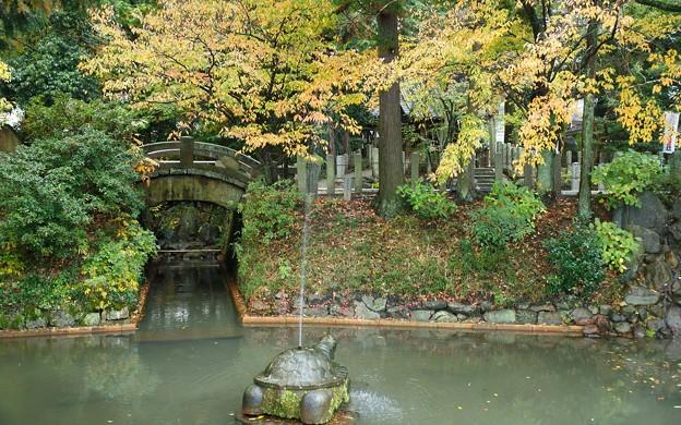 大井神社13
