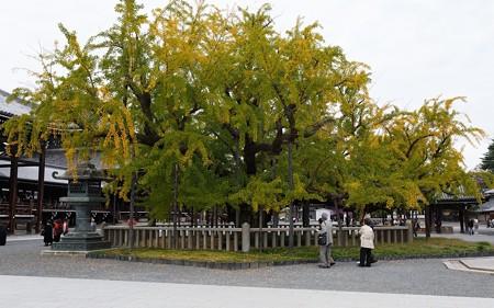 西本願寺18