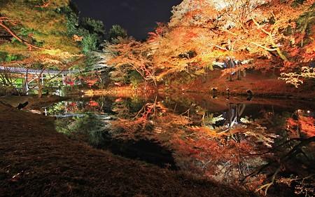 2009高台寺夜間拝観21