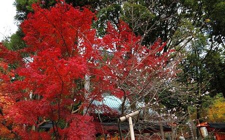 赤山禅院11