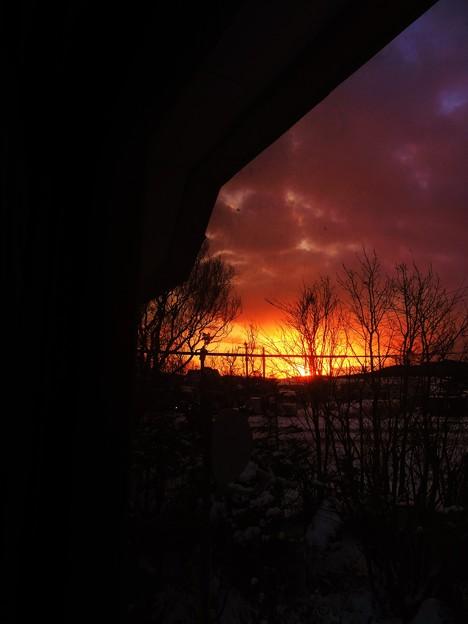 雪の夜明け