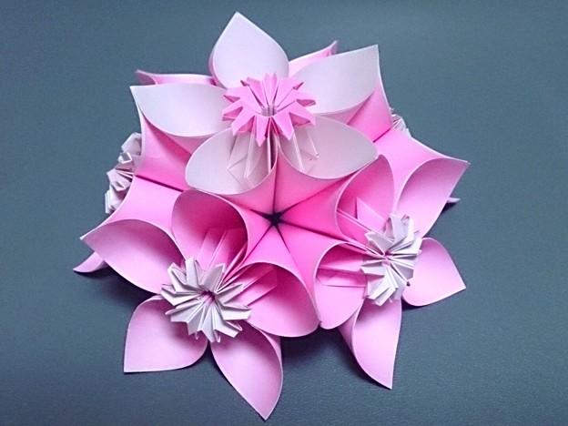 すべての折り紙 折り紙 くす玉 花 : 花くす玉 半分 - 写真共有 ...