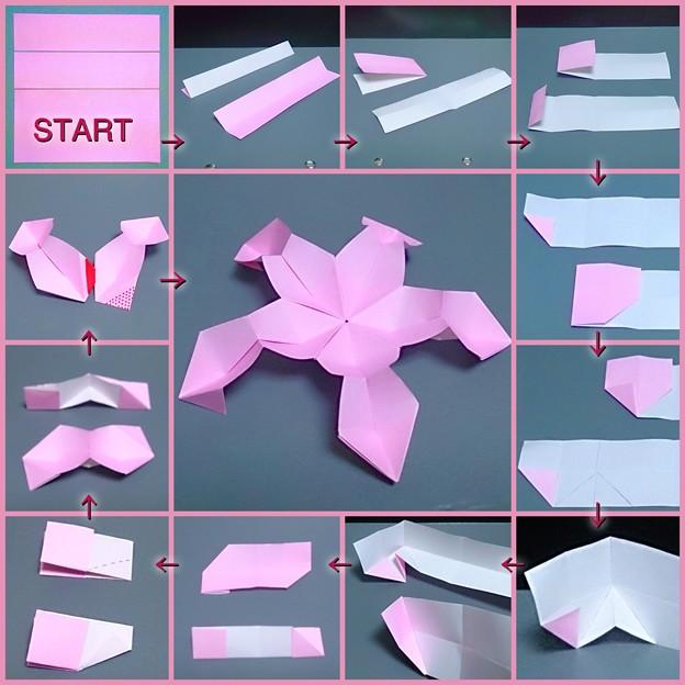 すべての折り紙 折り紙 ユニット : ユニット桜玉の折り方 - 写真 ...