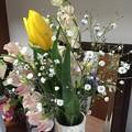 Photos: いただいたお花2015・31