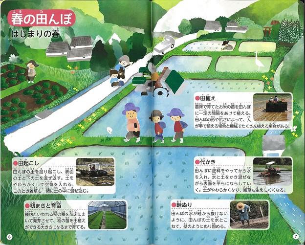 田んぼのまわりの観察ノート 2016年2月発行 (3)