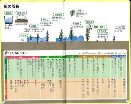 田んぼのまわりの観察ノート 2016年2月発行 (5)