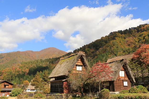 Photos: 白川郷の秋