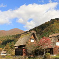 写真: 白川郷の秋