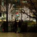 Photos: Tokyo colors (6)