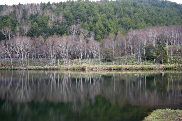 木戸池 (2)